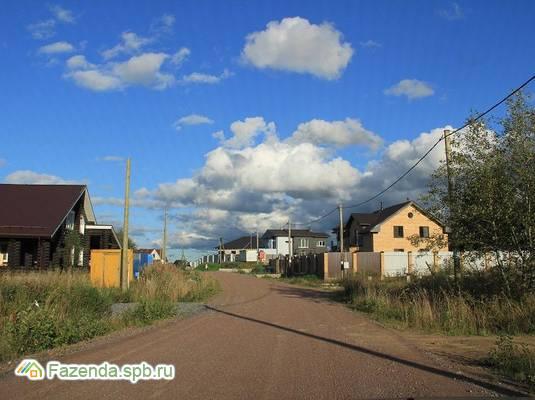 Коттеджный поселок  Новые Дубки, Всеволожский район. Актуальное фото.