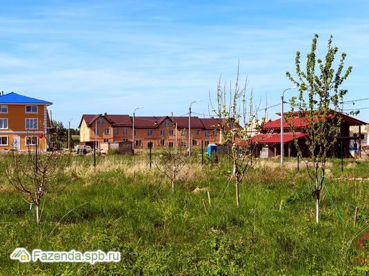 Коттеджный поселок  Дворцовые Предместья, Ломоносовский район. Актуальное фото.