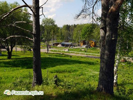 Коттеджный поселок  Дольское, Приозерский район. Актуальное фото.