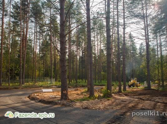 Коттеджный поселок  Город сад, Выборгский район СПб. Актуальное фото.