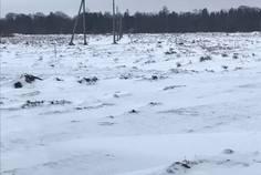 Рядом с Белый Остров расположен Коттеджный поселок  Белоостровская жемчужина