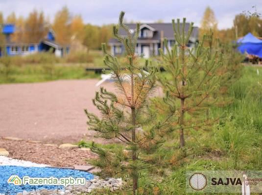 Коттеджный поселок  Ladoga Land, Всеволожский район. Актуальное фото.