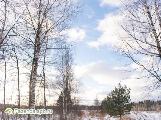 Коттеджный поселок  Коркинский ручей, Всеволожский район.