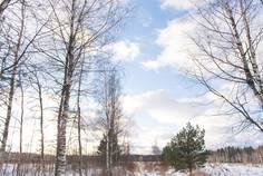 Рядом с Кокосы расположен Коттеджный поселок  Коркинский ручей