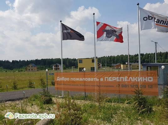 Коттеджный поселок  Перепёлкино, Всеволожский район. Актуальное фото.
