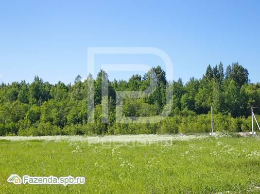 Коттеджный поселок  Лужки, Всеволожский район. Актуальное фото.