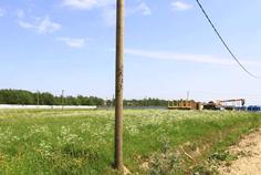 Рядом с Верхняя Ропша расположен Коттеджный поселок  Ломоносовский