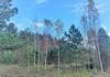 Продажа земельного участка Коробицыно. 7 соток..