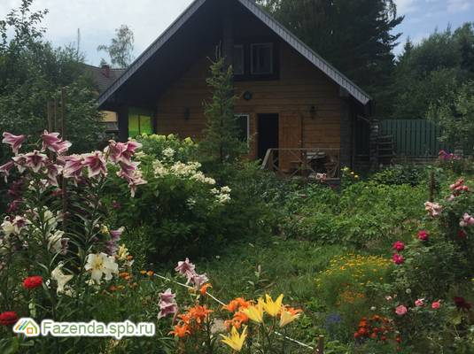 Продажа загородного дома 360 кв.м., Солнечное.