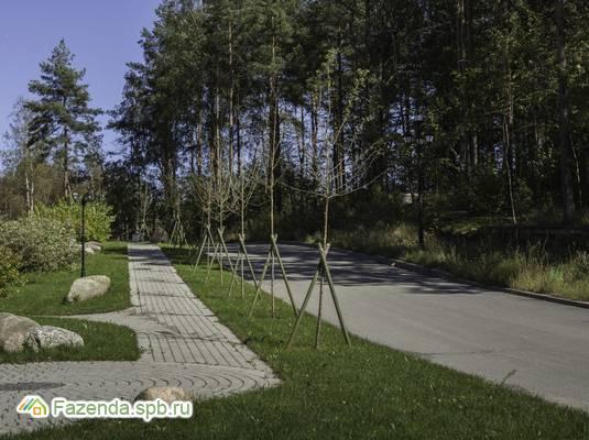 Коттеджный поселок  Янтарный Бор, Всеволожский район.