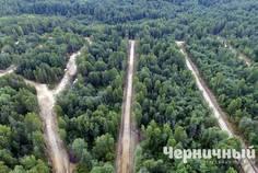Рядом с Новый Петербург расположен Коттеджный поселок  Черничный