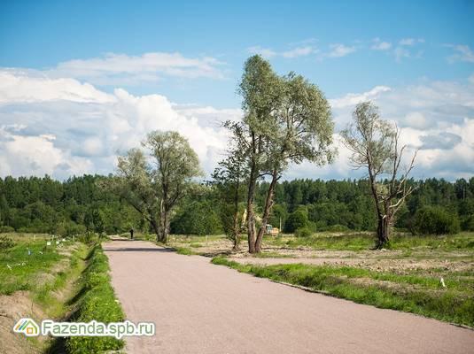Коттеджный поселок  Ульяновка, Тосненский район. Актуальное фото.