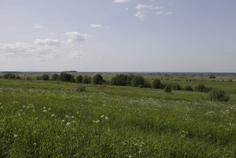 Рядом с Omakulma-Annino расположен Коттеджный поселок  Аннинские высоты