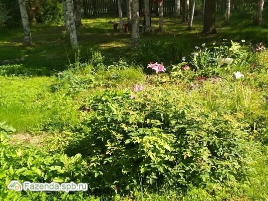 Продажа загородного дома 120 кв.м., Белоостров.