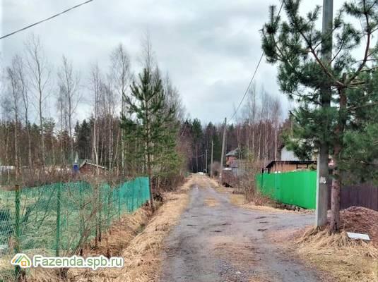 Продажа земельного участка Лебяжье. 6 соток..